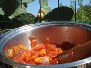 ricetta-marmellata-fico-dindia-3