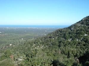 Panorama dai colli