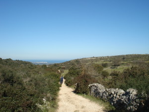 strada verso San Biagio colli Ostuni