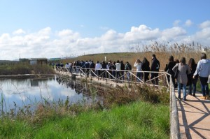 Ostuni, Zona_umida_impianto_itticoltura_parcodune_costiere